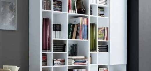 home-library-in-a-living-room-
