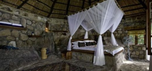 bed-bedroom-cabin-canopy-canopy-bed-deco