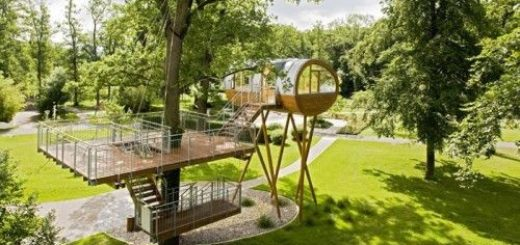 cool-treehouses