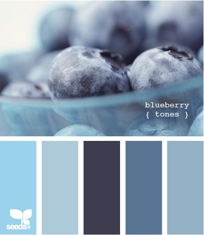 BlueberryTones510