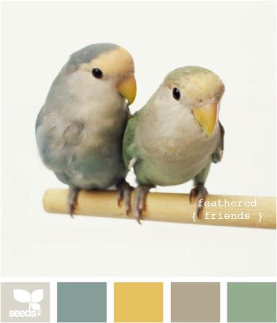 FeatheredFriends500