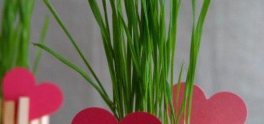 diy-clothespin-planter