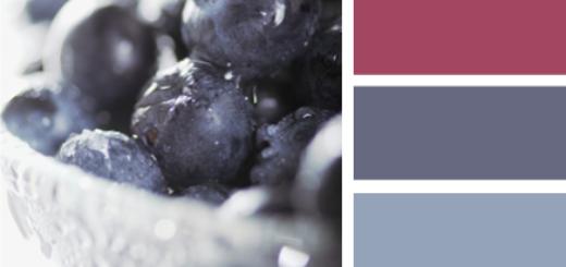 BlueberryTones615