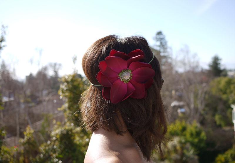 flowerhalo5