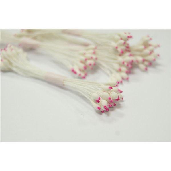-tychinki-cvetochnie- (2)