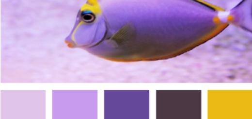 AquaticPurple605