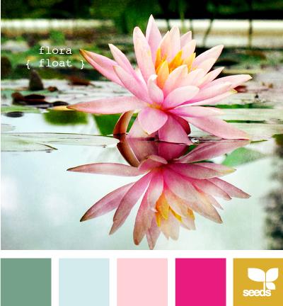 FloraFloat605