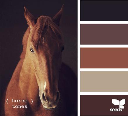 HorseTones610_1