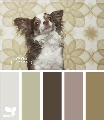PuppyTones615