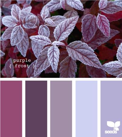 PurpleFrost605