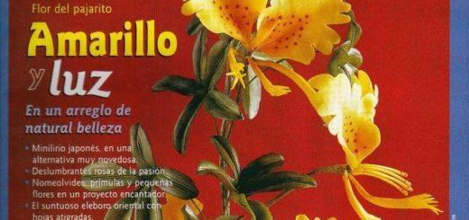 bienvenidas porcelana fria 2005 n 2 (flores)