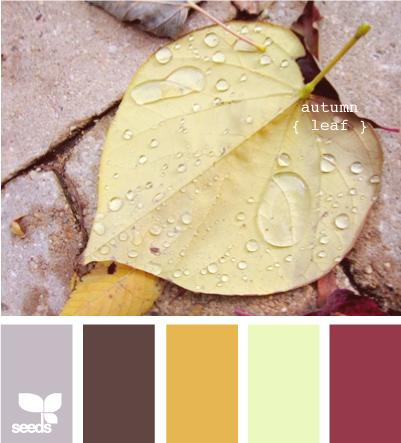 AutumnLeaf615