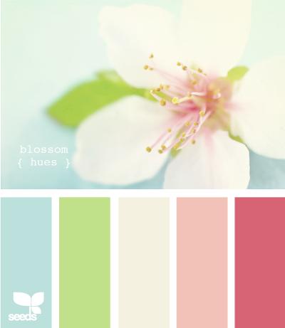 BlossomHues605