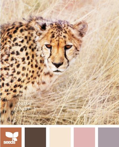 ColorHunt610