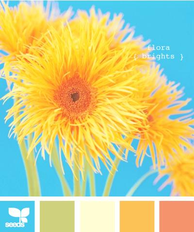 FloralBrights605