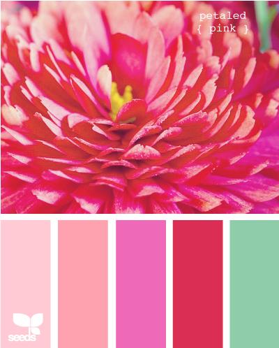 Фото сочетание розового цвета с другими цветами в интерьере