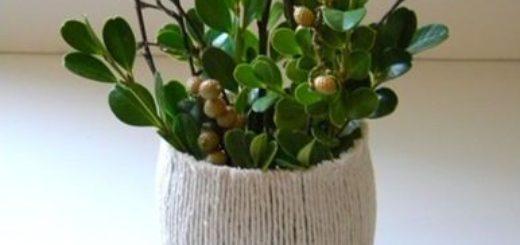 Twine-Vase