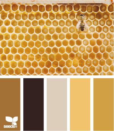 ColorComb