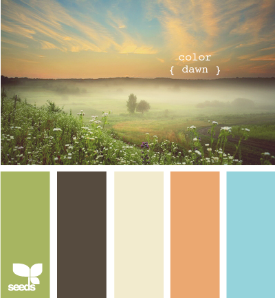 ColorDawn600