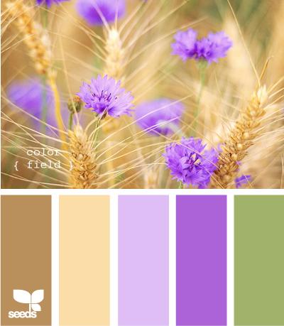 ColorField615