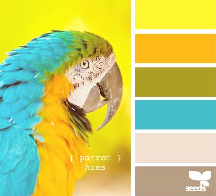ParrotHues615