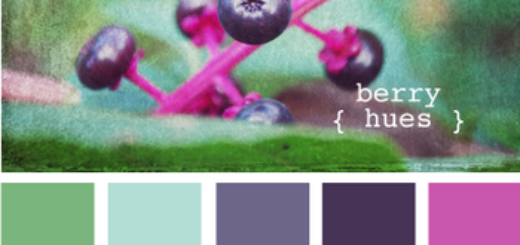 BerryHues610