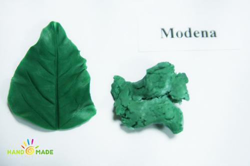 флористическая глина Modena