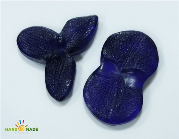 mold-cvetok-orhidei-falenopsis-l