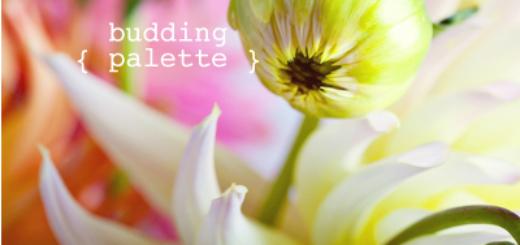 BuddingPalette615