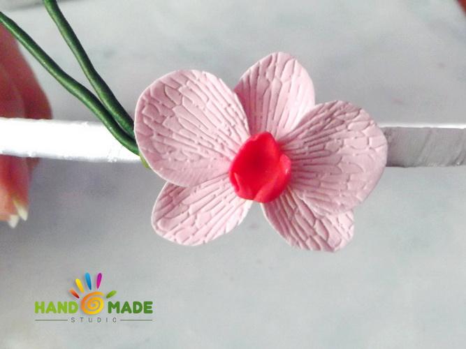 obruch-orhidey13-2