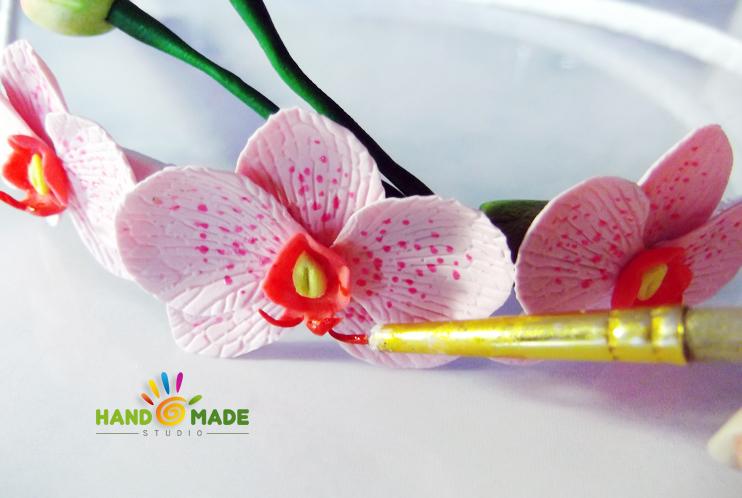 obruch-orhidey15
