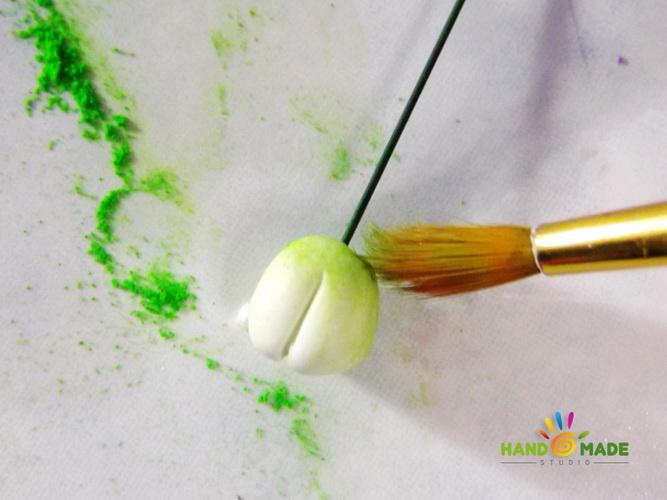 obruch-orhidey2