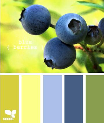BlueBerries605