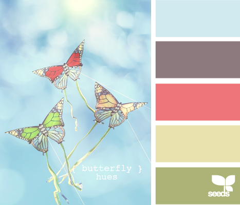 ButterflyHues610