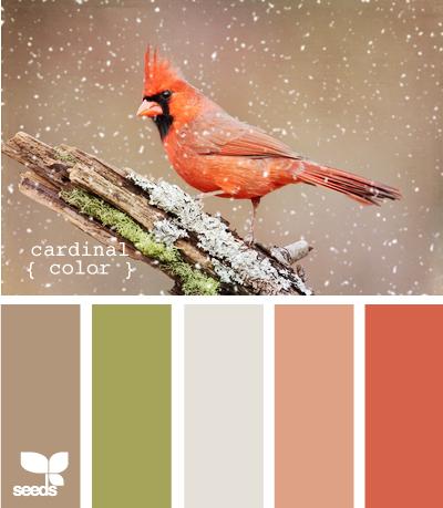 CardinalColor605