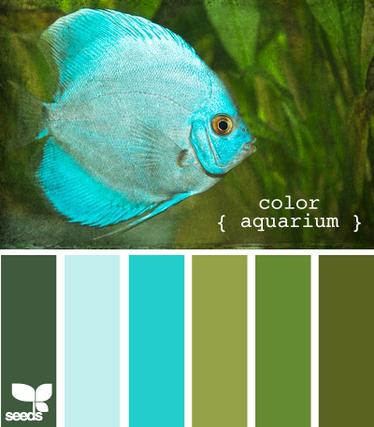 ColorAquarium625