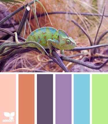 ColorChameleon