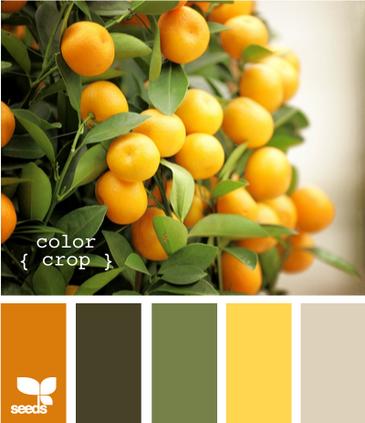 ColorCrop625