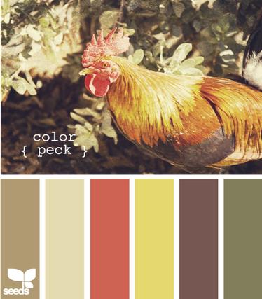 ColorPeck620