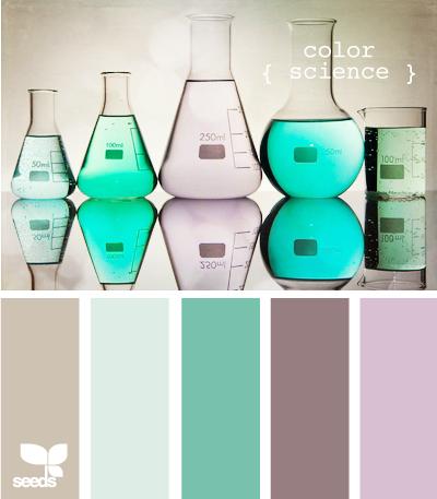 ColorScience600