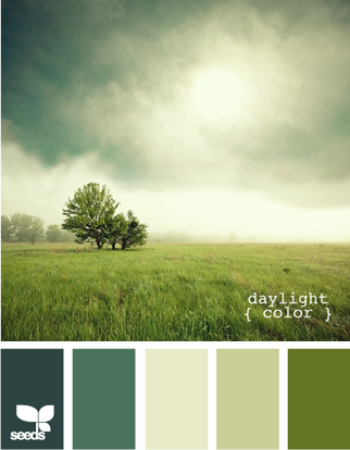 DaylightColor615