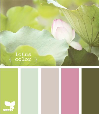LotusColor610