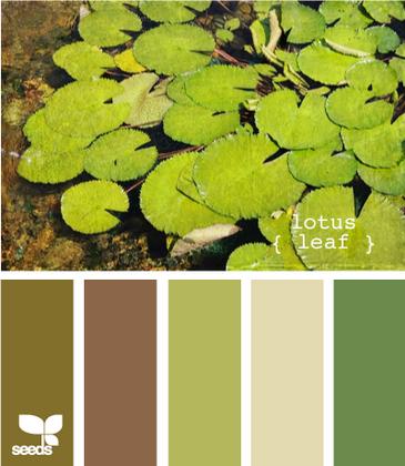 LotusLeaf610