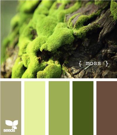 Moss625