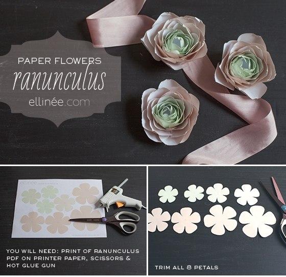 PaperRanunculus3
