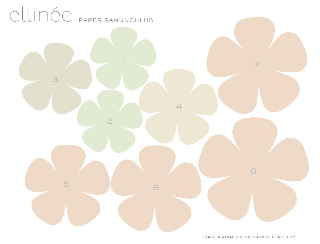 PaperRanunculus6