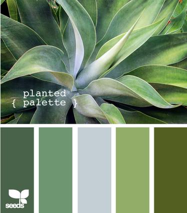 PlantedPalette605
