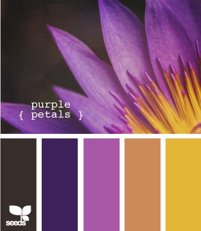 PurplePetals620