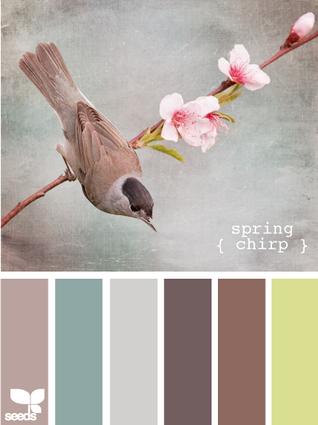 SpringChirp605