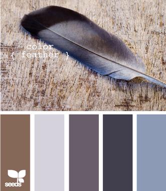 ColorFeather605_новый размер